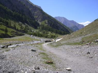 082 belvedere du mont viso juillet 2009 2