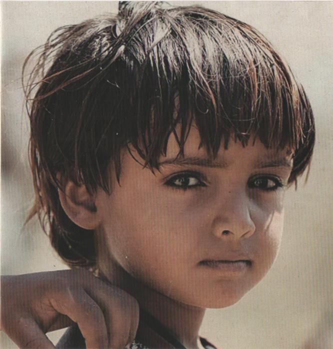 Solidarites international yemen 2